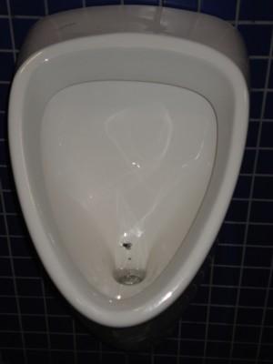 Zielbild - Fliege im Urinal. Kontext